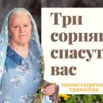 Рецепты от травницы Елены Федоровны Зайцевой