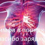 Почему лимфа так важна )))