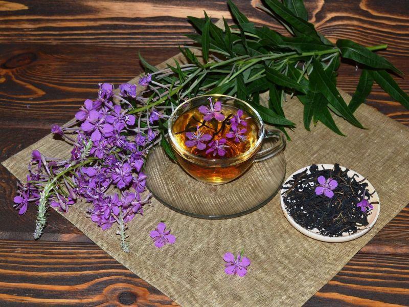 иван чай можно засушить и приготовить разными способами