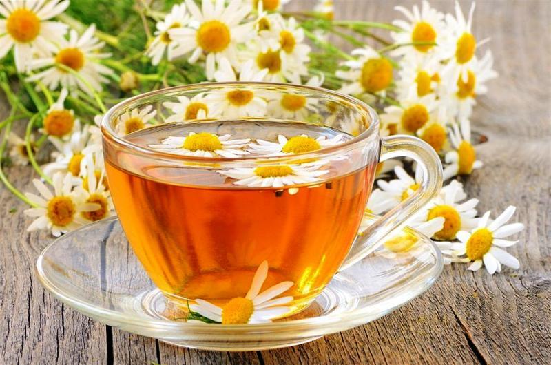 чай из цветов ромашки