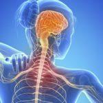 Герпес и рассеянный склероз – опасная связь