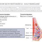 Рак молочной железы. Профилактика.