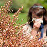 Инфекционная аллергия – спутник тяжелых инфекционных заболеваний