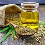 Конопляное масло – вкусно и полезно